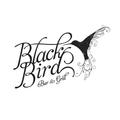 Live @ Blackbird - Saturday February 25th