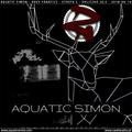2018-07-21 - Aquatic Simon - Rave Fanatics - Strefa Z (21-07-2018 - Orliczko 20,5)