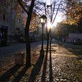 Sometimes You Wake Up in Belgrade