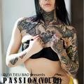 DJ VI TIEU BAO - PASSION (Vol.01)
