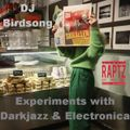 Automatic Relax | Experiments with Darkjazz & Electronica by DJ Birdsong