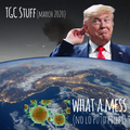 What a mess (no lo puto pilles) TGC Stuff March 2020