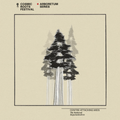 016 Centre Attacking Mids - The Giant Redwood (Sequoiadendron)