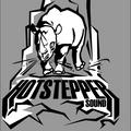 HOTSTEPPER WARM UP - LIVE @ BOOM SALUTE 2012
