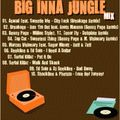 Baga Sound - Big Inna Jungle Mix