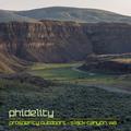 2017 - Phidelity - Live @ Prosperity Outdoor