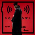 Soulbowl w Radiu LUZ: 236. Soul Control (2021-04-29)