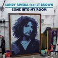 SHM vs Sandy Rivera ft LT BRown - Leave the World Into My Room ( Rafael Ribeiro Summer Boom remix)
