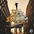 DJ SOULCHILD - Tru Jack Swing, Vol.1 (2016)