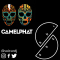 Süisse House Müsic Vol.12 (Best of CamelPhat)