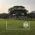 DJ Blush - Slow Down