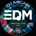 """DJ Micah with Elemental present """"Breakin The Ice"""". A Stealth Project."""