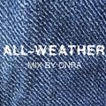 """""""All-Weather"""" mix for Ponytail Journal"""