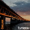 """timeok presents: the reversed cities series """"OMLAM - The End Of The Bridge"""""""