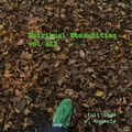 Spiritual Obscurities vol. XII - fall 2020