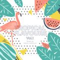 Tropical Flavours vol.1 (February 2018)
