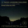 Lockdown Challenge #15 /// La Nuit /// Dj Harry Cover /// Voyage Au Bout De La Nuit