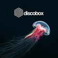 Fox & Ivana - DiscoBox Tirana 4.11.2017