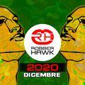 Robber Hawk - Dicembre 2020