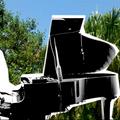 Hantrax [Live] - 24/05/20