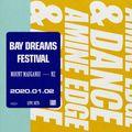2020.01.02 - Amine Edge & DANCE @ Bay Dreams Festival, Mount Mauganui, NZ