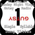 Sunday Night Vinyl CJ from NC 2021-06-06 11pm-1am show on Gutsy Radio