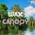 Wax Canopy - Sunday 17th January 2021