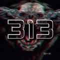 313 M-X9