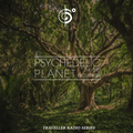 Traveler's Psychedelic Planet (The Third Excursion)