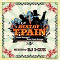 [Throw Back MIXTAPE / 2011 product] BEST OF T-PAIN vol,1 / mixed by DJ I-Cue