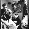 DJ Jazzywhut! Presents - Boomshotz! (90's Hip-Hop-Reggae 1991-1997)