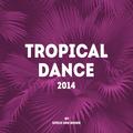 Tropical Dance 2014 ft. Ivo Field
