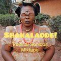 Shakalaode! - Tropical Sonidos Mixtape