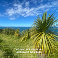 The Eastside Sessions Auckland - Nov 2020