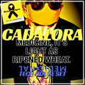 Cadalora's Medicinal Tech House Set - May 2020