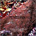 Tenebrous :: 2hr Dark Ambient Set