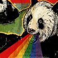 Panda Bear - Spitting Rainbow
