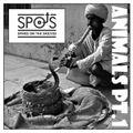 Sp.o.t.S. Radio Presents - Animals Pt.1 (Snakes) by Deejay Postie (aka Spot 1)