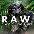 R.A.W. - Classic jungle mix for Bassrush