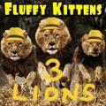 Fluffy Kittens 3 - 3 Lions