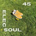 ElecSoul 45 #Jazz, sneakers & the sun