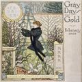 Gray Days and Gold - February 2021