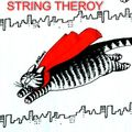 String Theroy
