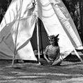 Maiia303 - Tribal Gathering 2020
