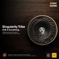 Singularity Tribe - DnB is Something [RANE VINYL]