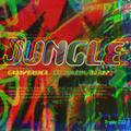 Derriscott Takes You Into The Jungle - Fantazia Celebration Mix