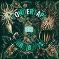 Yondertape 103 - Jungle Myst