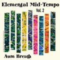 Deep Melodic Organic House : Elemental Mid-Tempo II