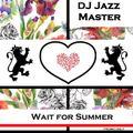 DJ Jazz Master Radio Mix 02.19 - Wait for Summer