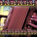 Acordeona 3000